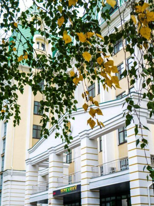 Лекція науковців-практиків кафедри аудиту та економічного аналізу