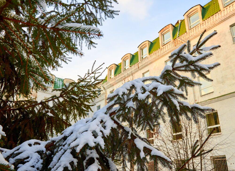 Кафедра журналістики, української словесності та культури запрошує взяти участь у I Міжнародній науково-практичній конференції